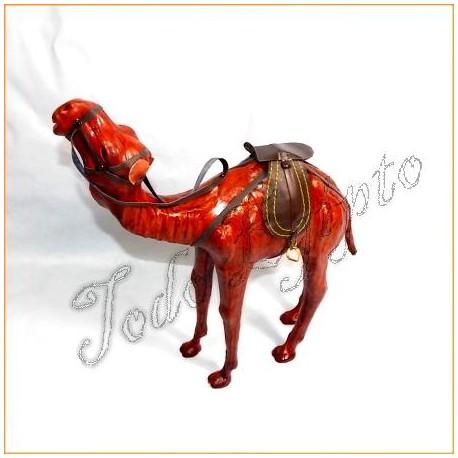 Camello de piel 1