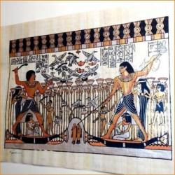 Papiros egipcios 30cmX25cm M6