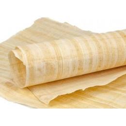 Papiro en blanco