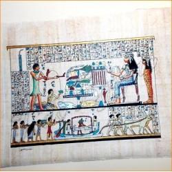 Papiros egipcios 30cmX25cm M20
